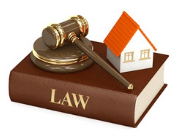 legitimation laws