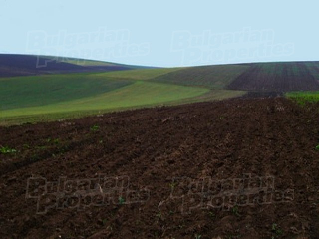 Agricultural land in Bulgaria among the cheapest in Europe