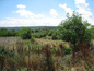 Land for sale near Montana. Sizeable plot, suitable for building a family villa