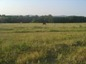 Land for sale near Primorsko. A spacious plot of agricultural land near Primorsko!